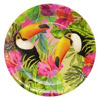 See more information about the Tropical Paper Plates 23cm Pack 12 - Toucan